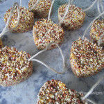 Guest Post: Bird Seed Ornaments