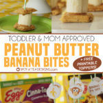 Peanut Butter Banana Bites | Toddler and Mom Approved Snack