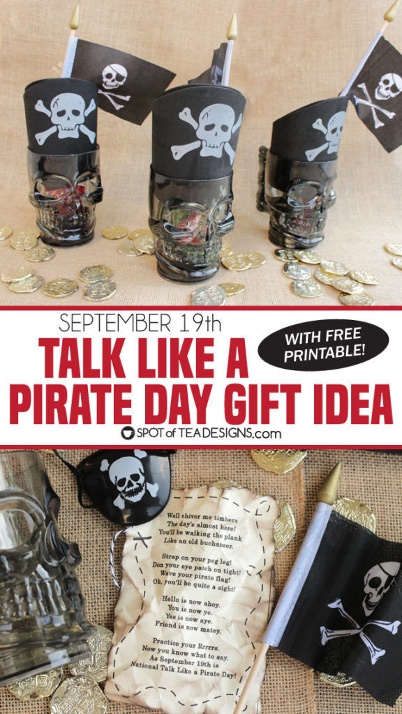 Talk like a pirate day gift idea